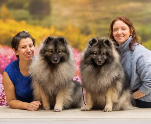 Etude pour l'amélioration du Bien-Être Animal en France